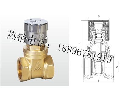 Z15W-16T 黄铜磁性带锁闸阀