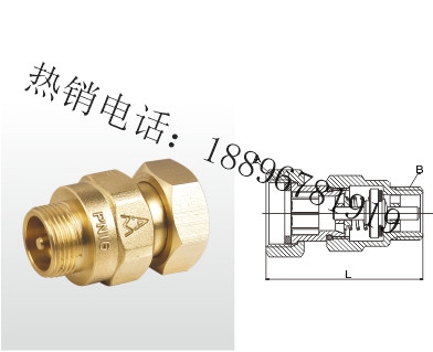 H32X-16T 黄铜水表止回阀