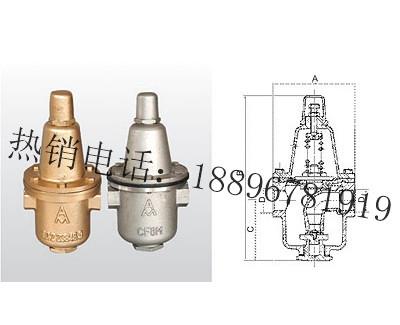 Y12X-10T/Y12X-10P 可调式减压阀